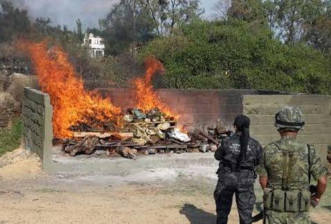 PGR incinera 128 kilos de droga en Morelos