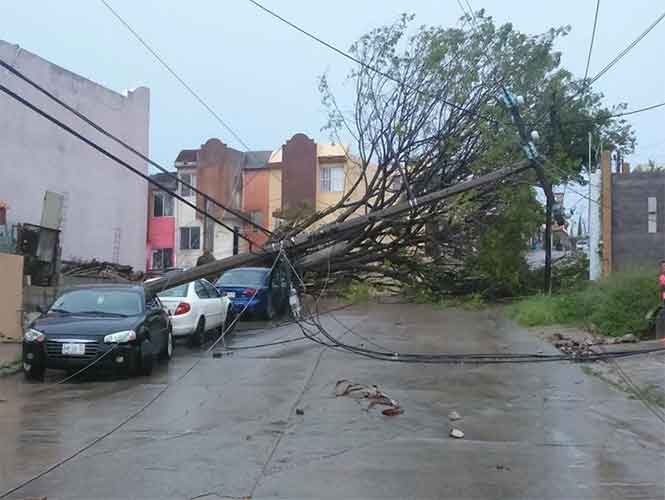 Lluvias azotan a Tamaulipas; evaluarán hoy las zonas afectadas