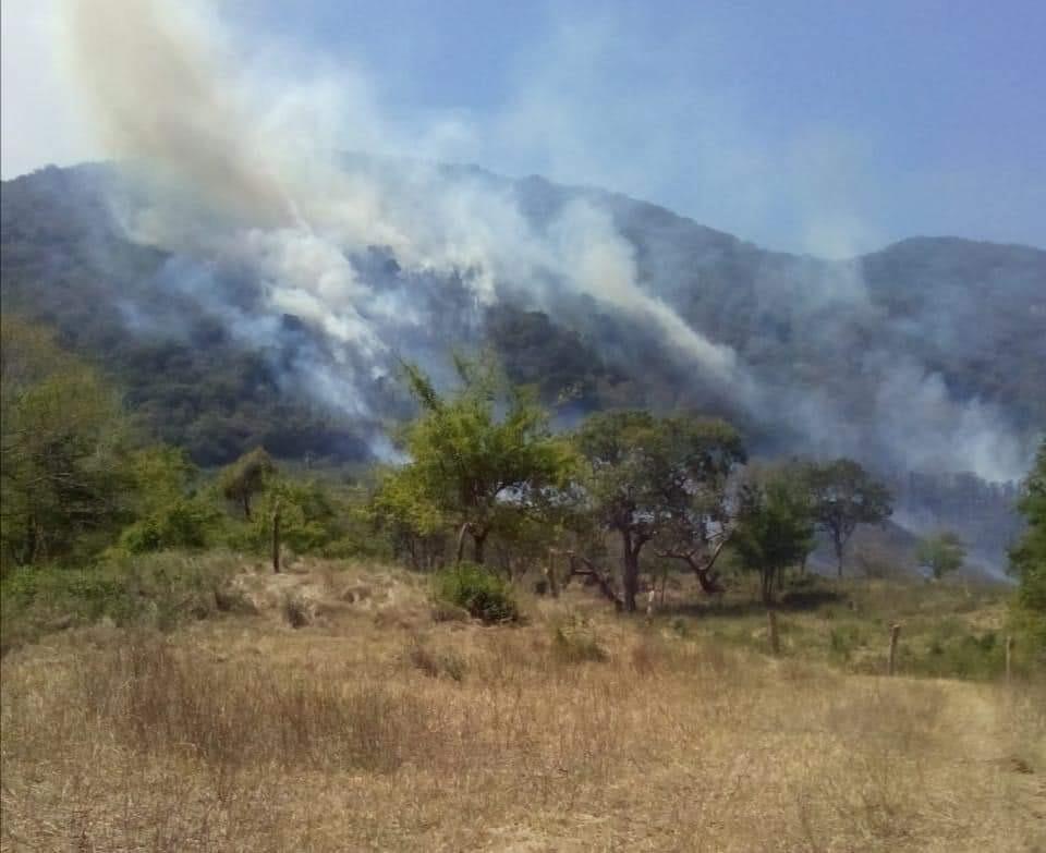 Plantea 'El Mijis' que Semarnat aplique Programa de Empleo Temporal para combatir incendios en SLP