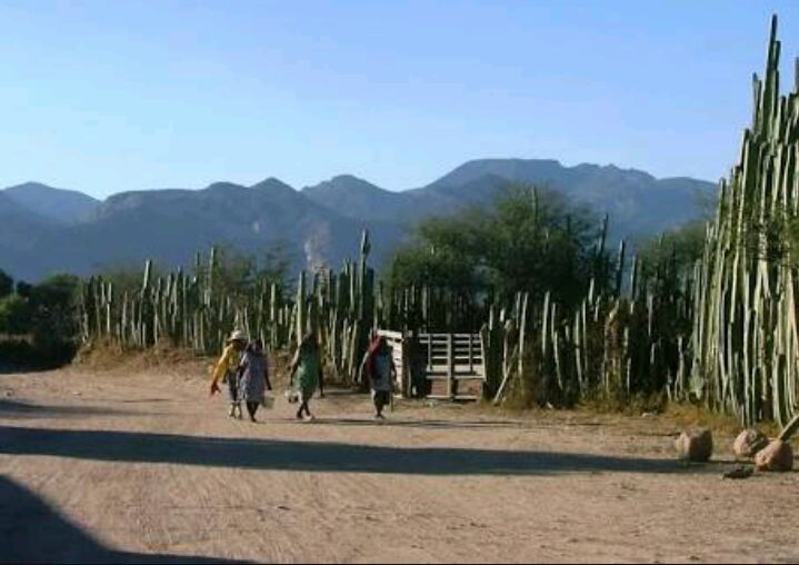 Violencia en Laguna de San Vicente exhibe incumplimiento de autoridades a recomendación de CEDH