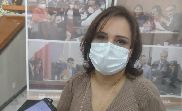331 iniciativas quedaron pendientes: Vianey Montes