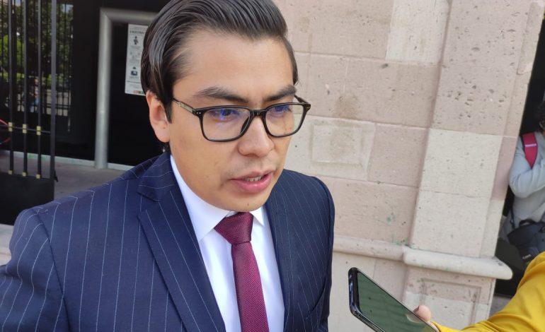 Alianza con PVEM beneficiará a los potosinos: diputados de Morena